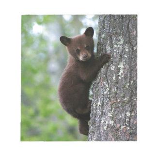 Bear Cub Climbing a Tree Note Pad
