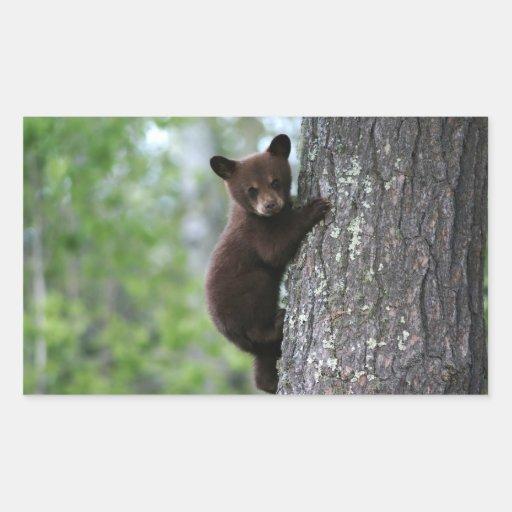 Bear Cub Climbing a Tree Rectangular Sticker