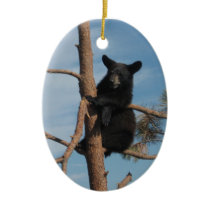 Bear Cub In A Tree Ceramic Ornament
