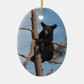 Bear Cub In A Tree Ceramic Ornament