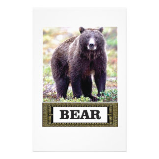 bear cub in art stationery