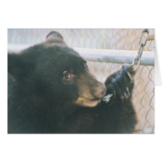 Bear Cub Note Card - Chain