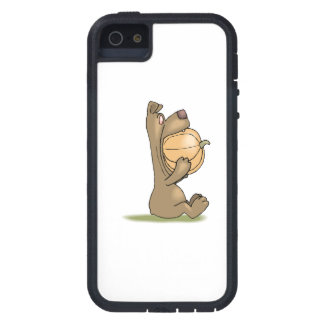 Bear Eating Pumpkin iPhone 5 Cases