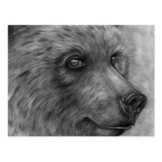Bear Face Postcard