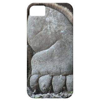 Bear Feet iPhone 5 Cases