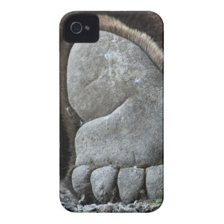 Bear Feet Case-Mate iPhone 4 Cases