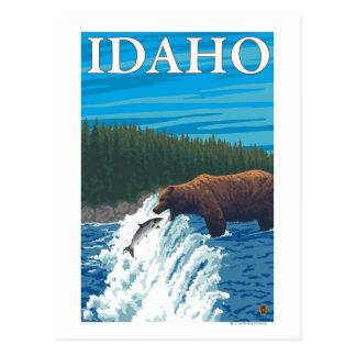 Bear Fishing in River - Idaho Postcard