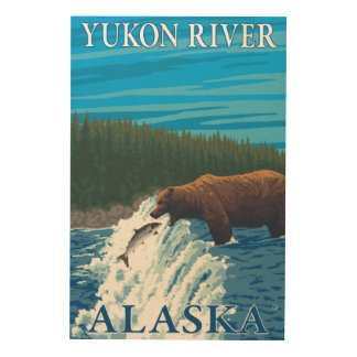 Bear Fishing in River - Yukon River, Alaska Wood Print