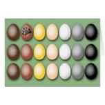 Bear Flag Eggs Card
