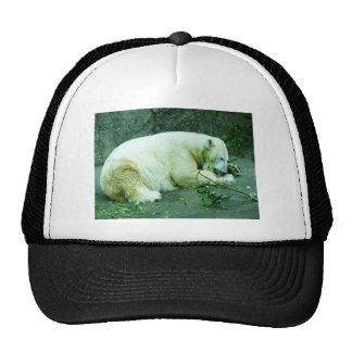 Bear Greens Trucker Hat