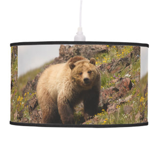 bear hanging lamp