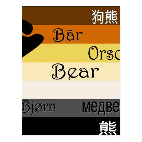 Bear in Many Languages Postcard