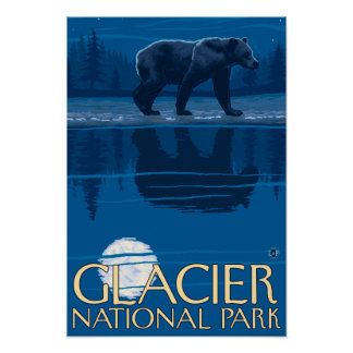 Bear in Moonlight - Glacier National Park, MT Posters