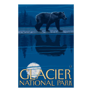 Bear in Moonlight - Glacier National Park, MT Poster