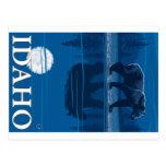 Bear in Moonlight - Idaho Postcard