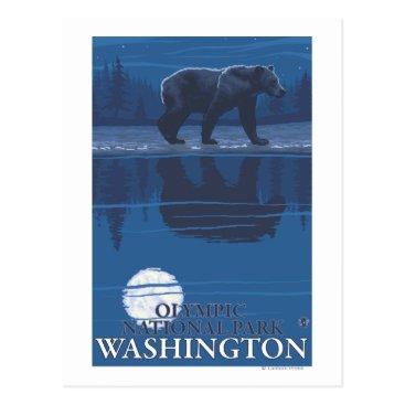 Christmas Themed Bear in Moonlight - Olympic National Park, WA Postcard
