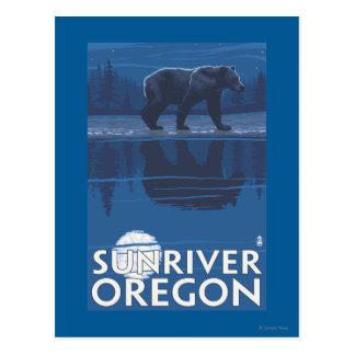 Bear in Moonlight - Sun River, Oregon Postcard