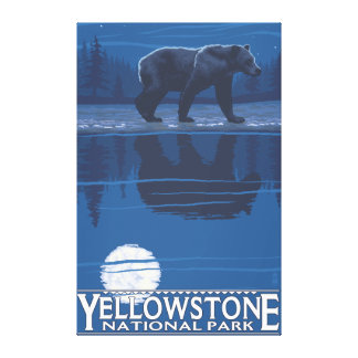 Bear in Moonlight - Yellowstone National Park Canvas Prints