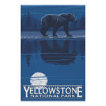 Bear in Moonlight - Yellowstone National Park Posters