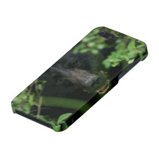 Bear iPhone Cover - Savvy