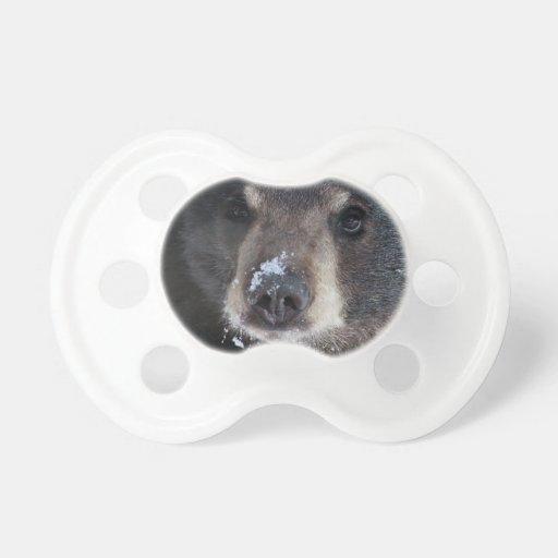 Bear Kisses Anyone? BooginHead Pacifier