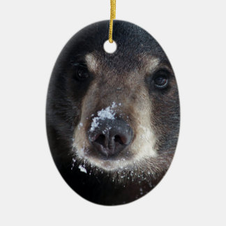 Bear Kisses Anyone? Double-Sided Oval Ceramic Christmas Ornament