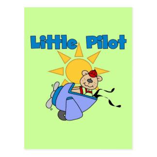 Bear Little Pilot T-shirts and Gifts Postcard