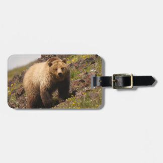 bear tag for bags