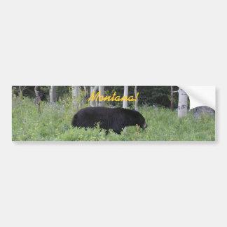 Bear Montana Bumper Sticker