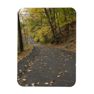 Bear Mountain park in the fall Rectangle Magnet