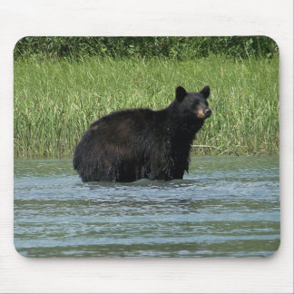 Bear Mousepad