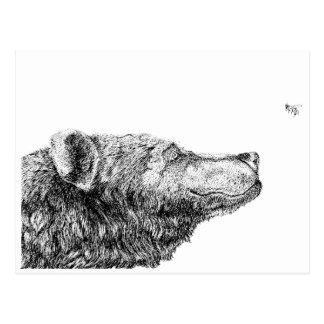 Bear Necessities by Inkspot Postcard