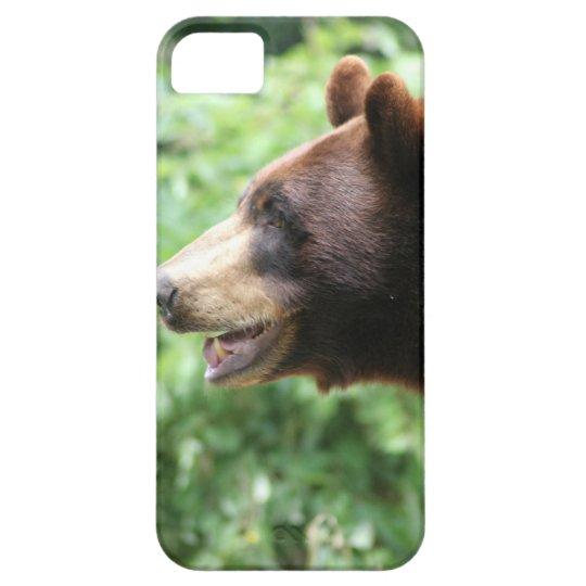 Bear Photograph iPhone 5 Case