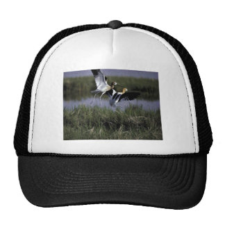 Bear River Migratory Bird Refuge Trucker Hat