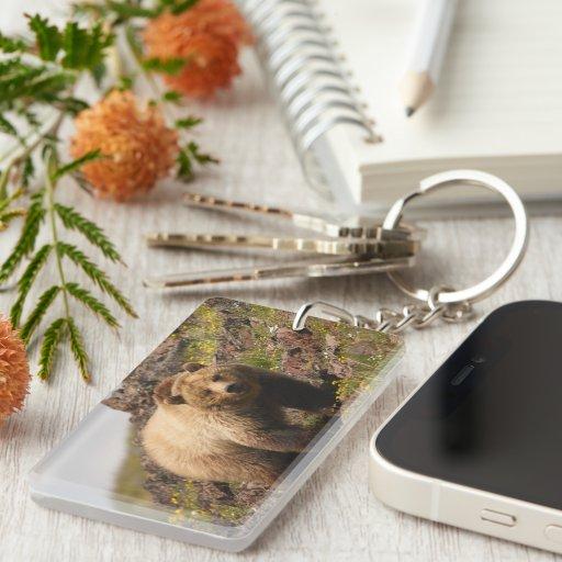 bear Single-Sided rectangular acrylic keychain