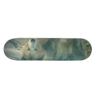 Bear sk8 board skate decks