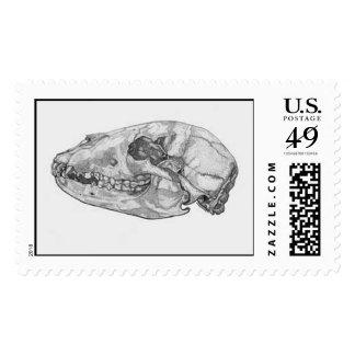 bear_skull postage stamp