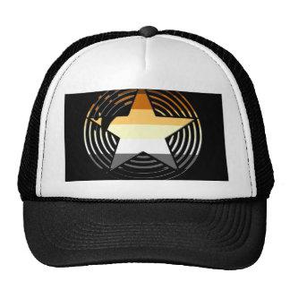 Bear Stars Hat
