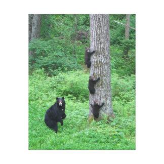 Bear & Three Cubs - Canvas Print - Kessea