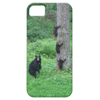 Bear & Three Cubs iPhone 5 Cases