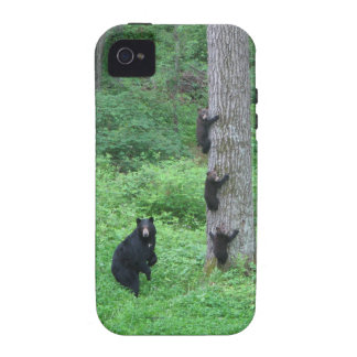 Bear & Three Cubs - iPhone 4/4S - Reitzner Vibe iPhone 4 Cases