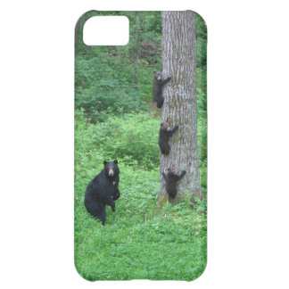 Bear & Three Cubs iPhone 5C Cover