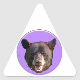 Bear Triangle Sticker
