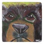 Bear Trivet (You can Customize)