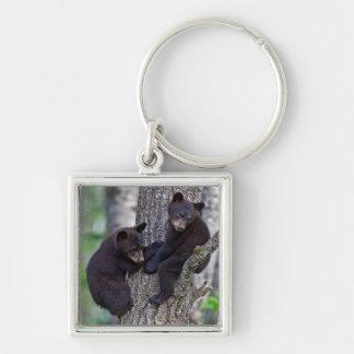 Bear Twins Tree Climbing Branches Cute Animals Art Keychain