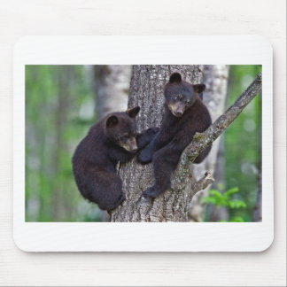 Bear Twins Tree Climbing Branches Cute Animals Art Mouse Pad