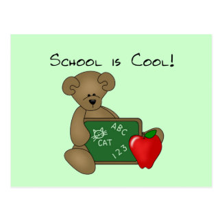 Bear with Writing Board School is Cool Postcard