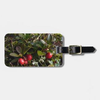 Bearberry, Arctostaphylos uva-ursi Travel Bag Tags
