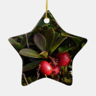 Bearberry, Arctostaphylus uva-ursi Ceramic Ornament