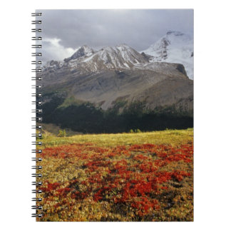 Bearberry in early autumn Athabasca Peak in the Spiral Notebook